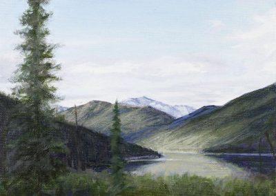 Looking North – Wild Lake