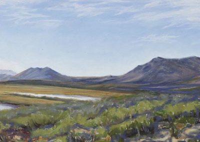 Noatak Panorama